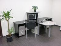 Промоция на Проектиране на мебели за офис кабинети лукс
